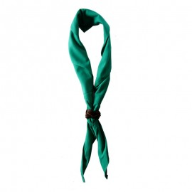 Foulard Vert vif Uni